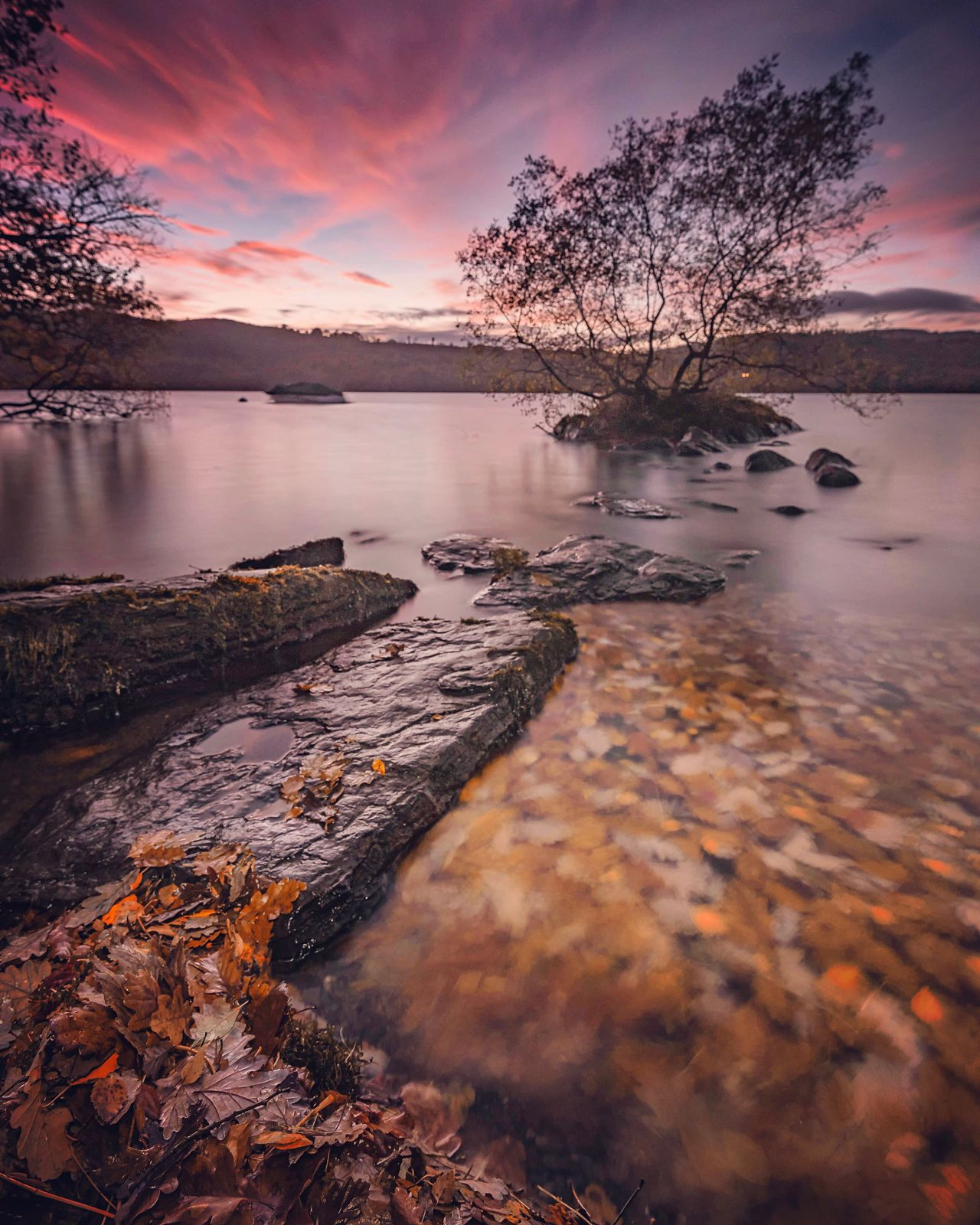 Leaf Surge | Windermere, Lake District U.K. Sunset Nature Tree Water Beauty In Nature No People Scenics Outdoors Sky Day Windermere Lake View Lake District Waterscape Travel Photography Landscape Travel Destinations Abstractions In Colors Beauty In Nature Sky And Clouds Sky_collection Skyporn Cloudporn Lakes  Water Reflections