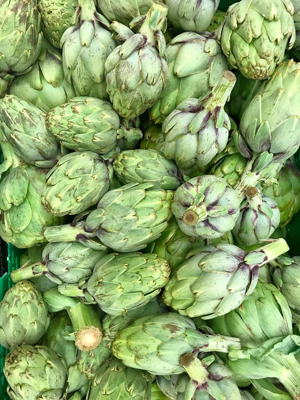 vegetable, healthy eating, food and drink, green color, food, artichoke, freshness, full frame, backgrounds, no people, market, raw food, abundance, retail, for sale, brussels sprout, large group of objects, directly above, day, outdoors, close-up