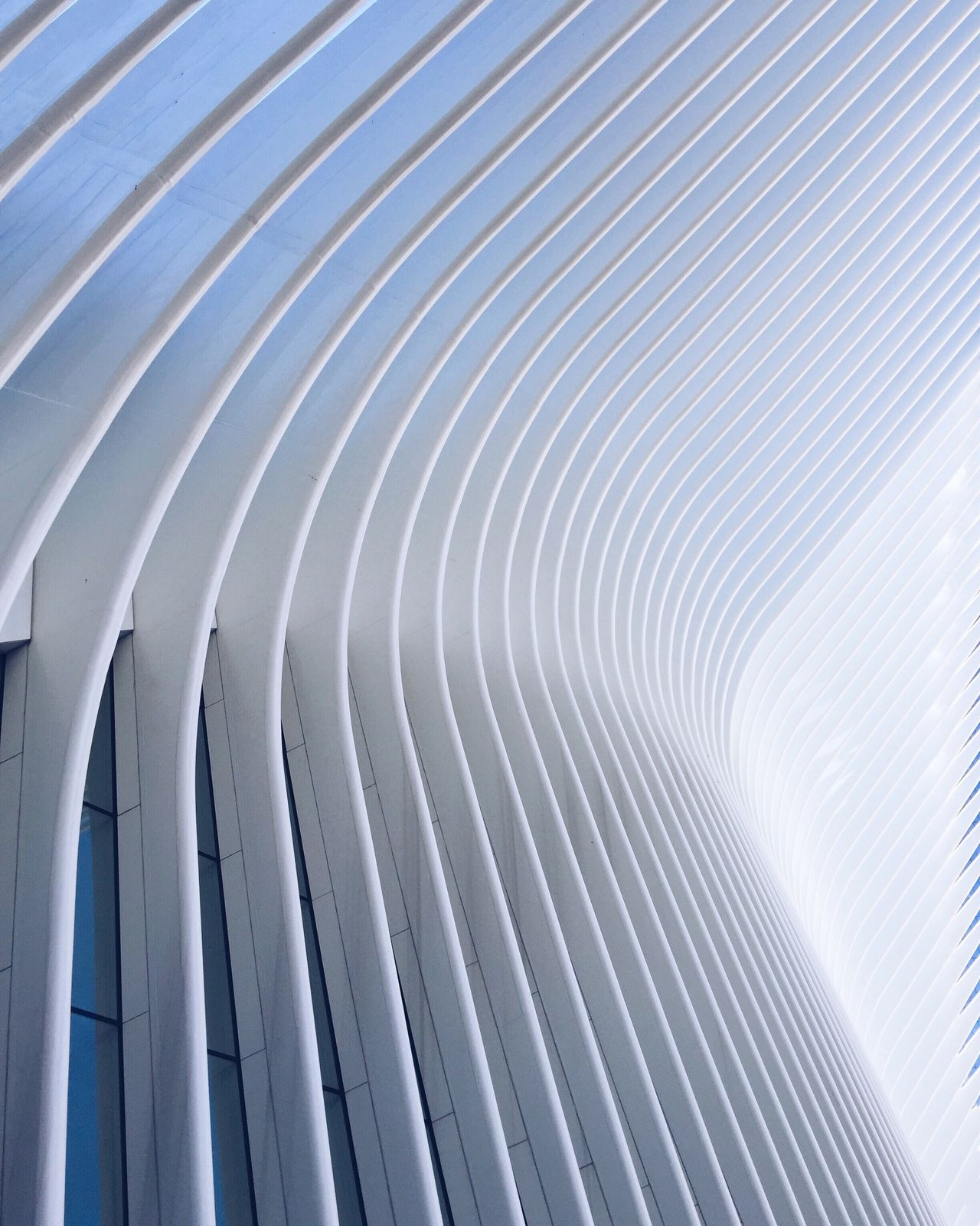 Oculus Backgrounds Pattern Architecture Architecture_collection No People Architectural Detail Modern Architecture Calatrava EyeEm Travel Destinations EyeEm Gallery City New York City Check This Out The Architect - 2017 EyeEm Awards New York OpenEdit EyeEm Best Shots Architectural Feature Architecturelovers
