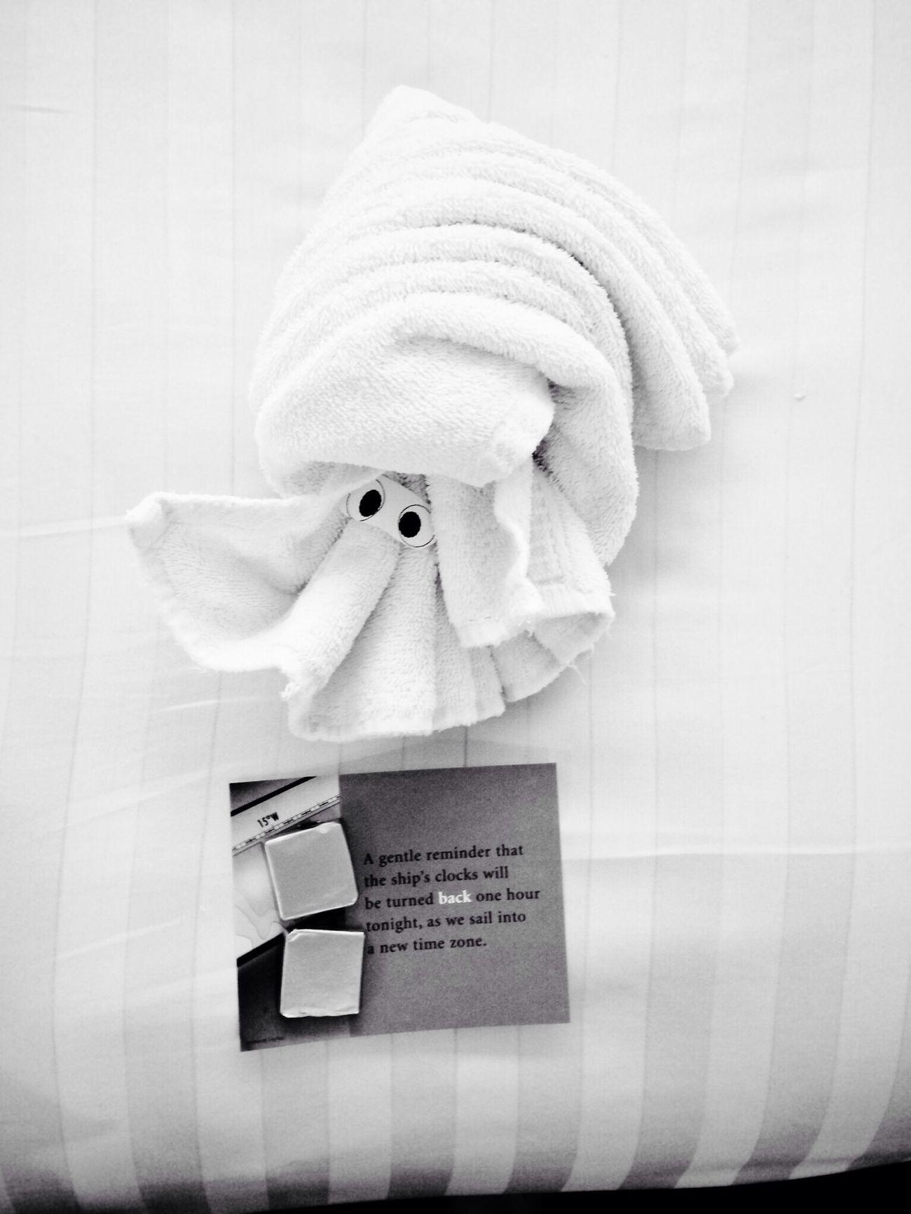 IPhoneography Blackandwhite Hotel Room Towel Animal