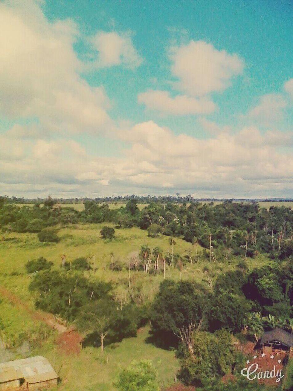 Mi pais, mi lugar, mi sangre. Beauty In Nature Nature <3 .. Paraguay