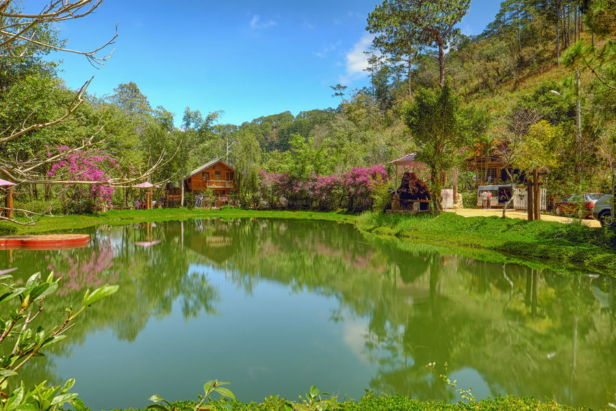 Reflection Tree Nature Water Outdoors Lake Agriculture Scenics No People Day Tranquility Landscape Sky Beauty In Nature Plant Flower Mountain
