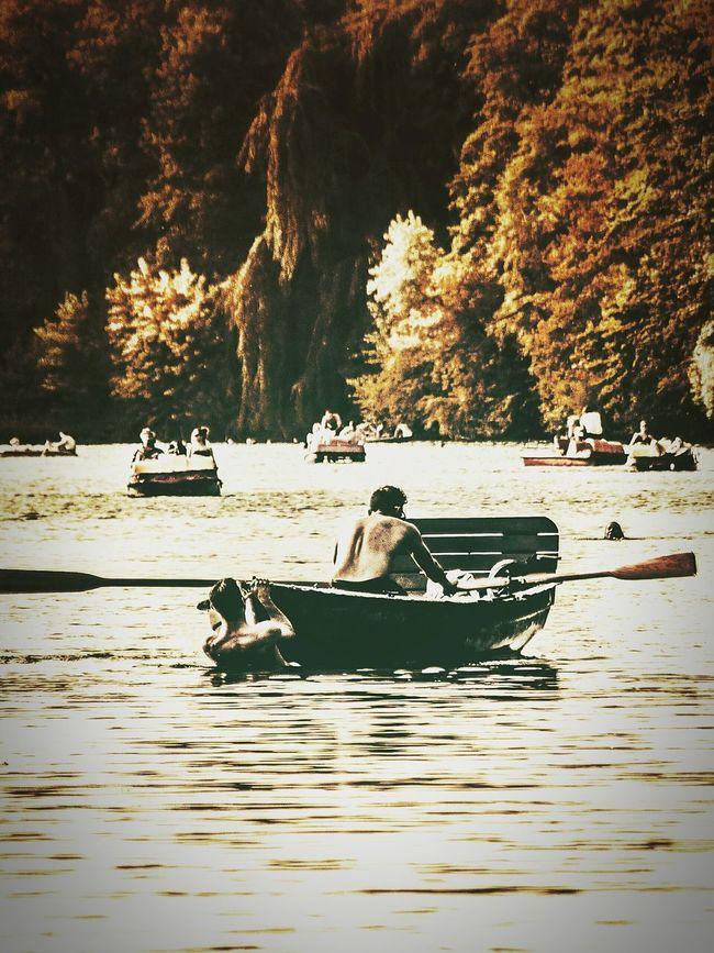Swimming Boattrip Enjoying The Sun Blind Passanger