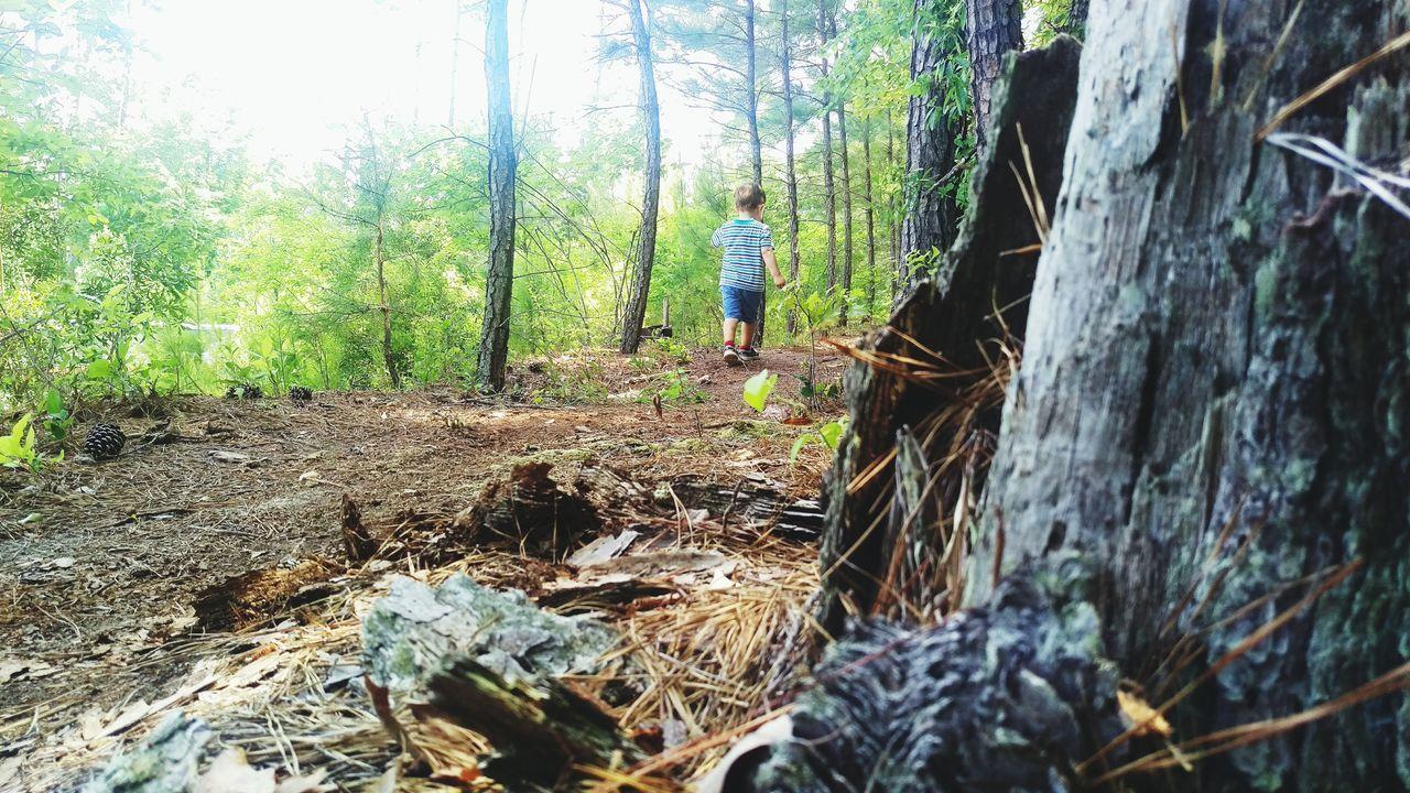 Summer Loveletters Exploring Boy