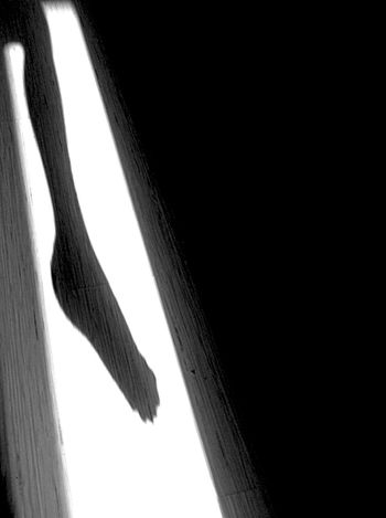Leg & Foot Creative Light And Shadow Exploring Light And Shadow Blackandwhite Photography Human Anatomy Minimal