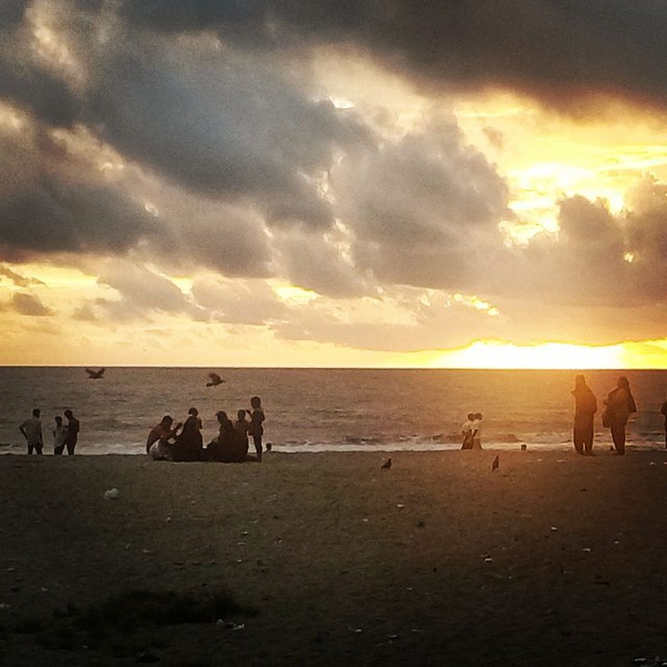 Sea Seaandsun Birds Random People Instagram Sunsets Clouds Evening Eveningwalk Kerala Kozhikode Vscogood Awesome Instacam