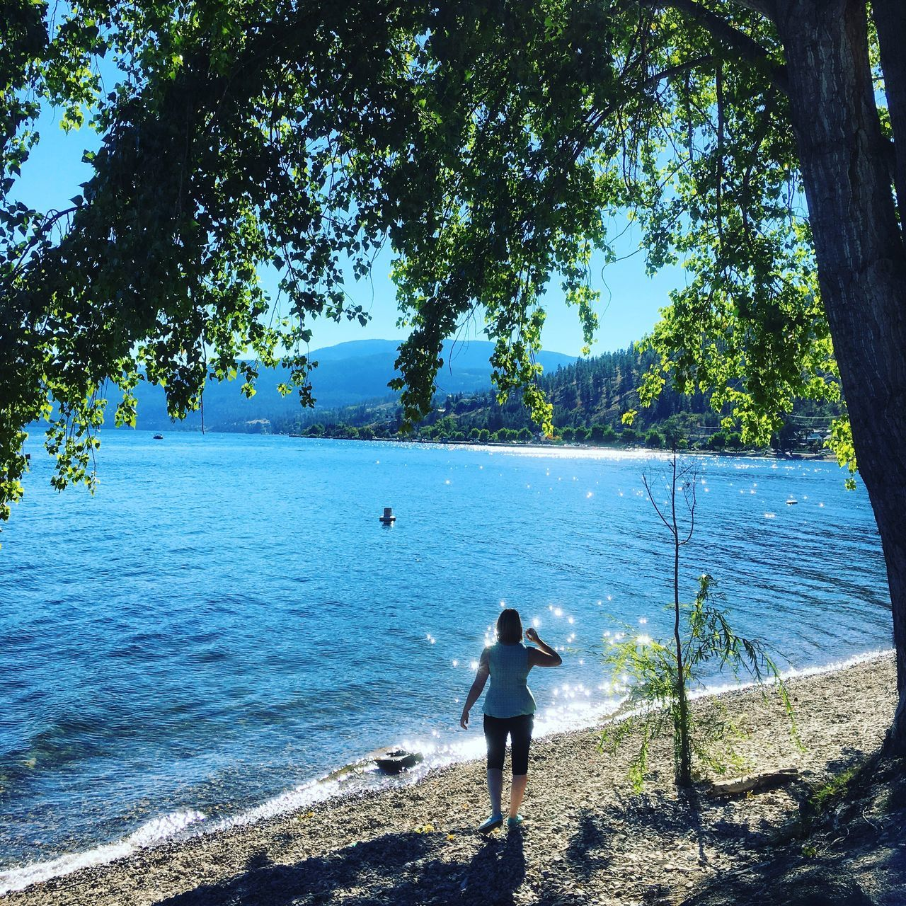 tree, sea, water, nature, real people, standing, day, beauty in nature, beach, leisure activity, scenics, tranquil scene, outdoors, one person, blue, vacations, horizon over water, people