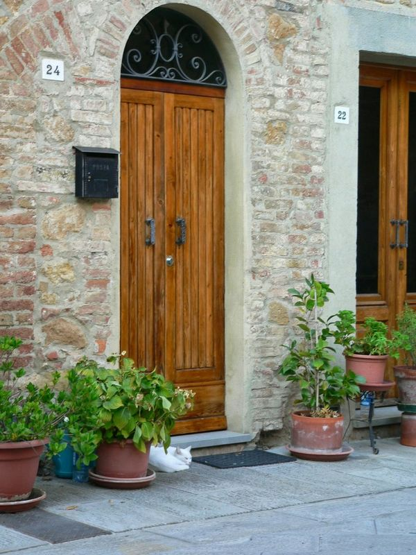 Italy Pienza Cat Doorway Tuscany Italy Photos Italy_vacations Italy_photolovers Pienza Italy Doors With Stories Doors Of Distinction Doorcollector pienza (toscana) Tuscan Tuscany Italy Tuscanny Door EyeEmNewHere EyeEmNewHere