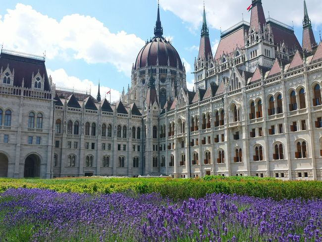 Greetings From Budapest Parlament Budapest Budapeste Hungary Hungria Gold The Essence Of Summer Sightseeing In Budapest Budapest Ladyphotographerofthemonth Beautiful Budapest Budapest Scenes Budapest Parliament Architecture EyeEm Awards 2016 Architectural Photography Budapest, Hungary Sightseeing Spot Blue Sky And Clouds Sightseeing The Architect - 2016 EyeEm Awards Beautiful Flowers Lavender Showcase June