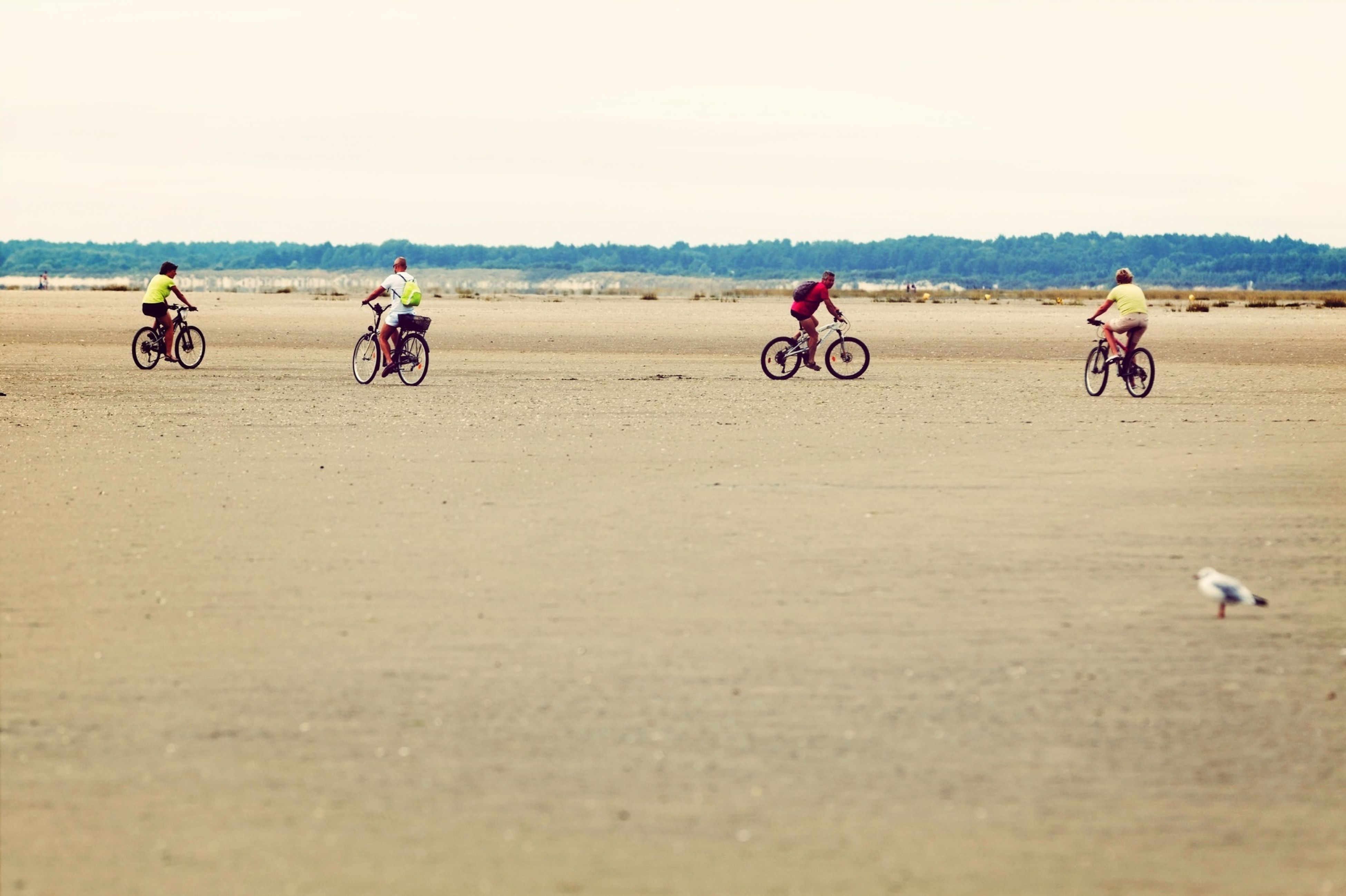 bicycle, transportation, mode of transport, land vehicle, riding, men, lifestyles, leisure activity, clear sky, copy space, sand, cycling, beach, stationary, motorcycle, travel, parked, person, day