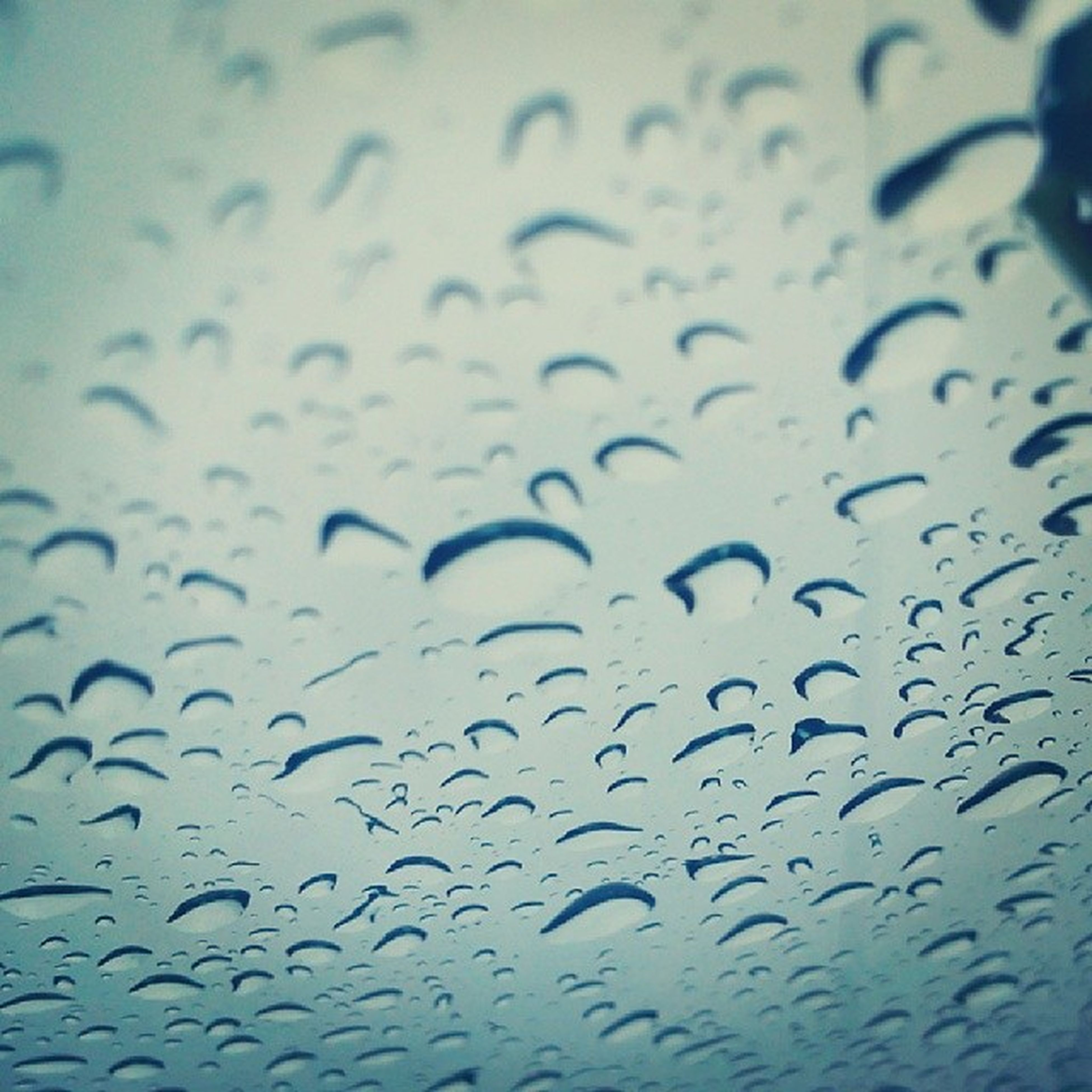 drop, full frame, backgrounds, wet, water, indoors, window, rain, raindrop, glass - material, transparent, close-up, weather, pattern, season, glass, focus on foreground, no people, detail, sky