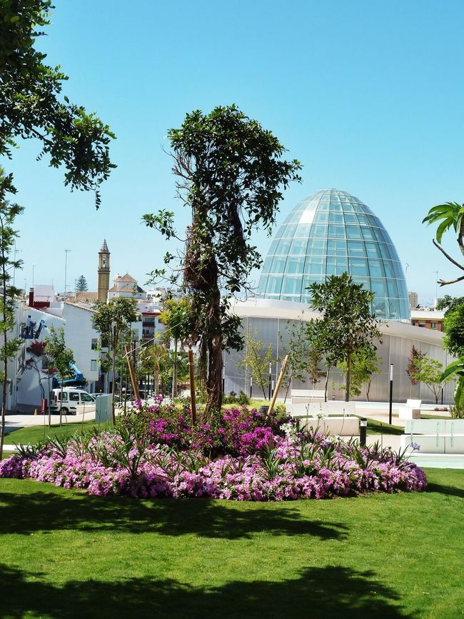 The orchid house,, Spain First Eyeem Photo Estepona Glass Dome Dome Modern Architecture Flowers,Plants & Garden Orchid House Urban Spring Fever The Architect - 2016 EyeEm Awards