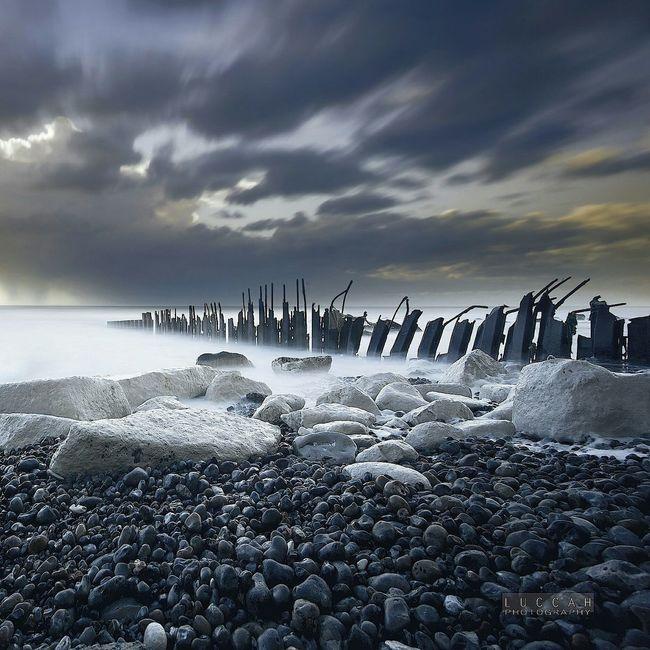 Vertebrale. @ Luccah First Eyeem Photo Fine Art Photography Luccah Boulogne-sur-Mer