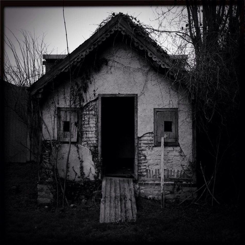 The Little House Hidden