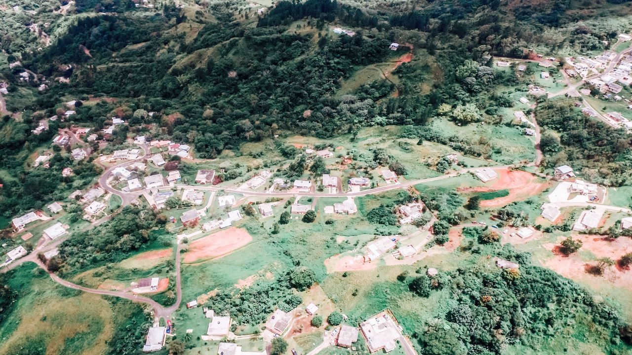 Puerto Rico High Angle View Tree No People Day Outdoors Beauty In Nature Landscape Scenics Nature Aerial View Tranquil Scene Tranquility Agriculture Rural Scene Mountain Architecture Aerial Photography Dronephotography Aerial Shot