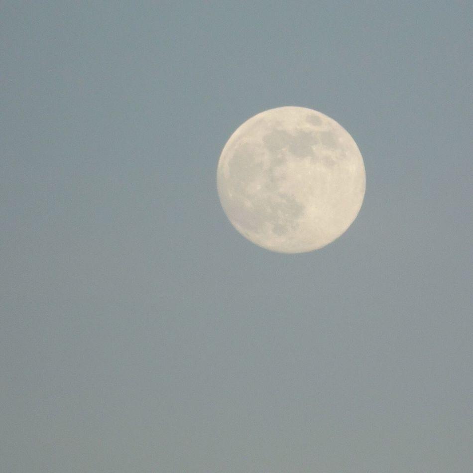 Mira La Luna! Blue Moon The Purist (no Edit, No Filter)