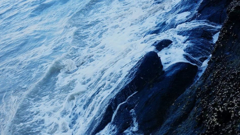 Waves crashing on the rocks is truly a therapeutic sound Waves Water Rock Rocks Crashing Wave Port Douglas Cairns Fnq Far North Queensland Nq Australia Ocean Blue And Black Shoreline White Wash Best Of EyeEm EyeEm Eyeem Australia Peaceful Tranquility Tranquil Moving Seaside Shore