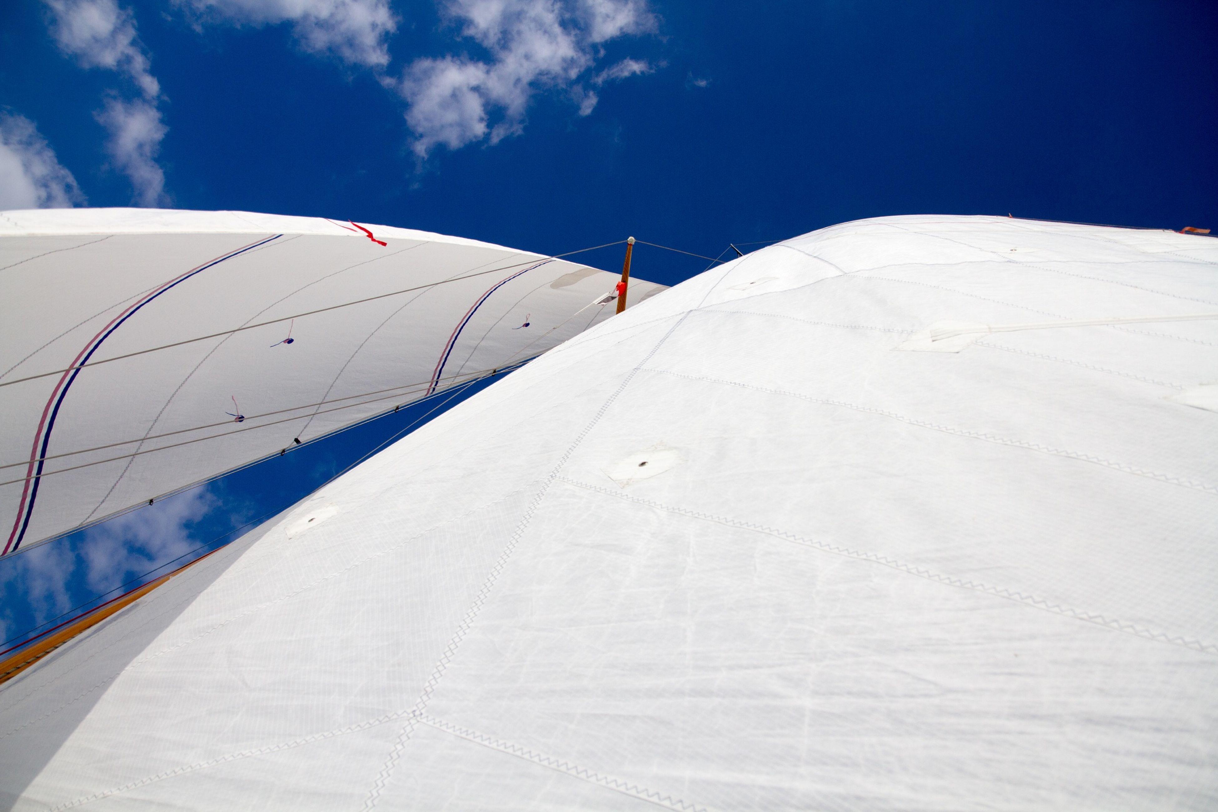 White Sails Under Blue Sky