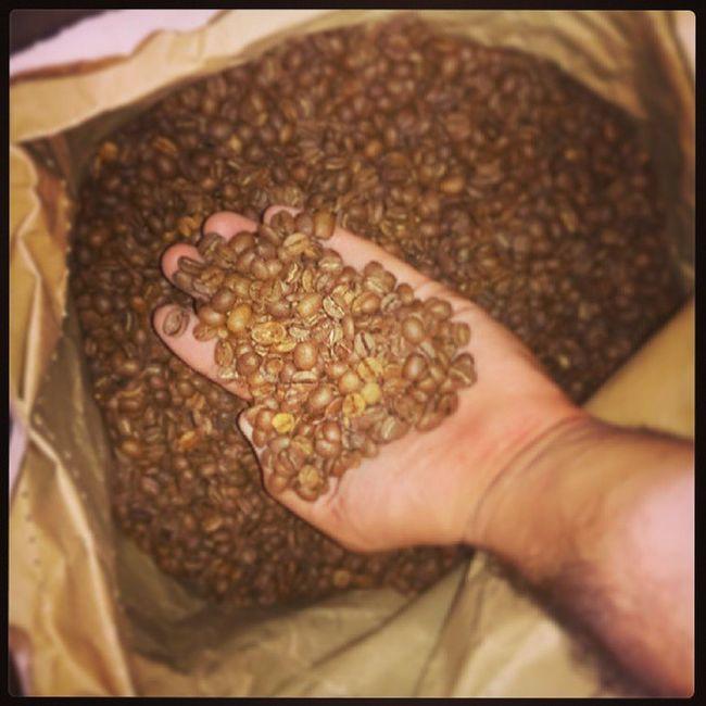Kokelkurukahve K ökelkurukahve Kahvedeposu Coffeebeans coffee mersin