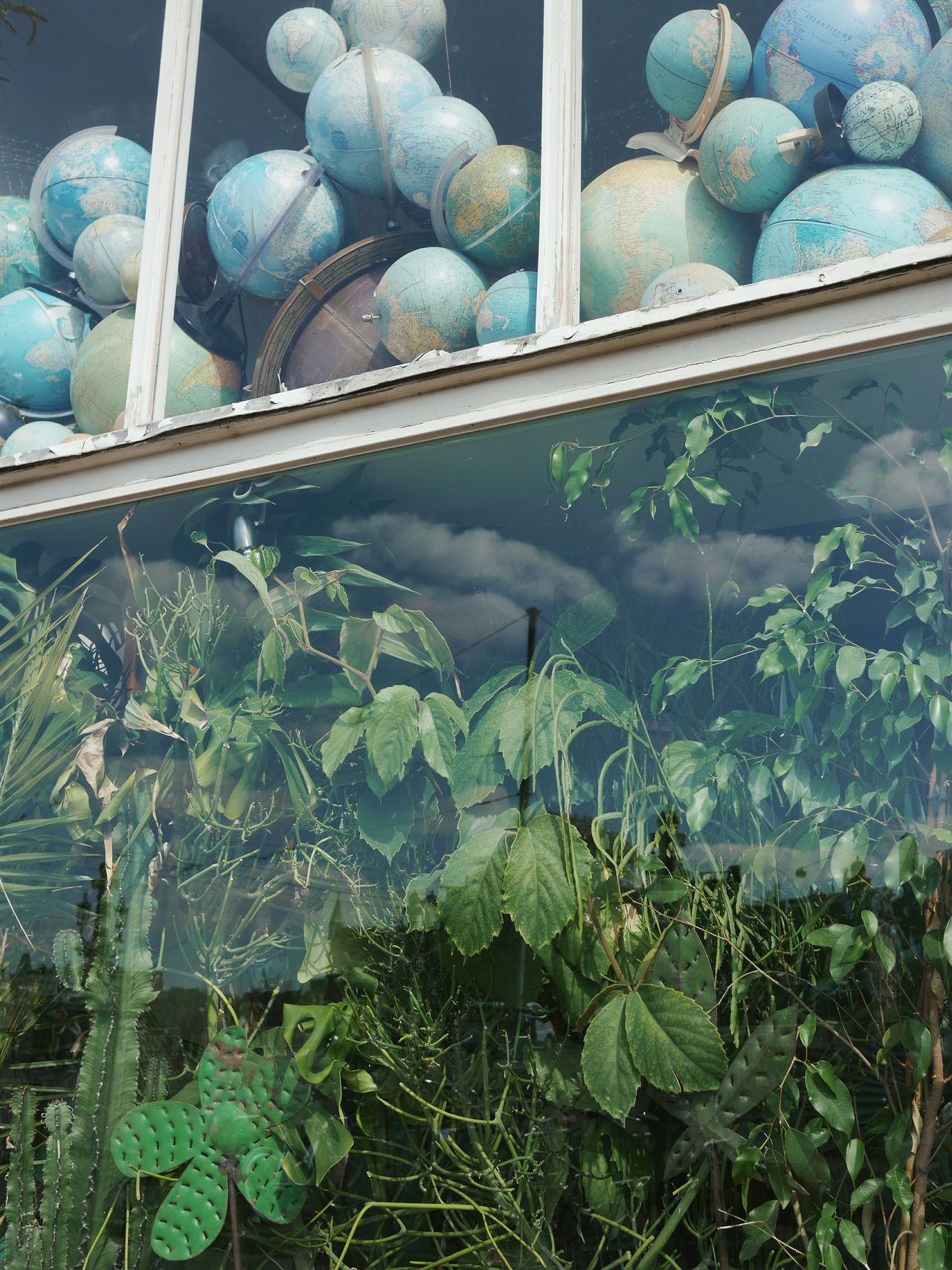 Seen in Amsterdam Earth globes Plants reflections clouds window