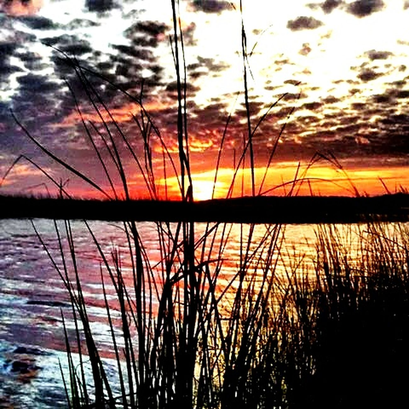 Sunset #sun #clouds #skylovers #sky #nature #beautifulinnature #naturalbeauty #photography #landscape Hello World Learn & Shoot: Simplicity Simplicity Sunset Harbor Nc EyeEm Best Shots - Sunsets + Sunrise Sunset_collection EyeEm Sunset Sunsetporn