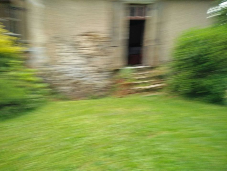 Blurred imagery. Taking Photos Enjoying Life Relaxing Garden Phonography  Abstract Macro Mouvement Speed Wallpapers Blurs