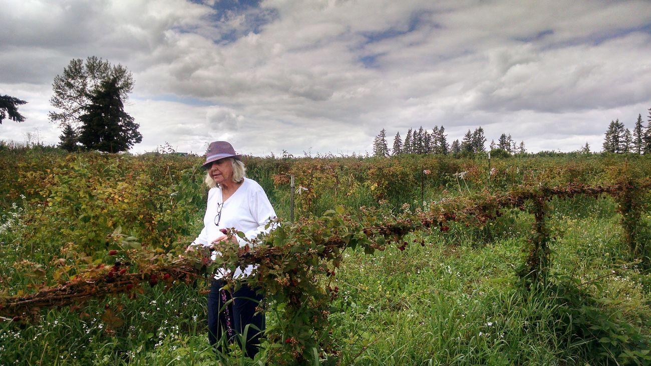 Finding Glory Grandma Eve Berry Picking Women Around The World