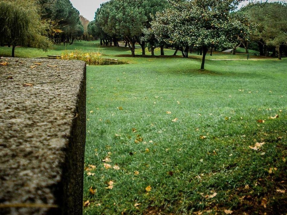 Beautiful stock photos of park, Built Structure, Concrete, Day, Grass