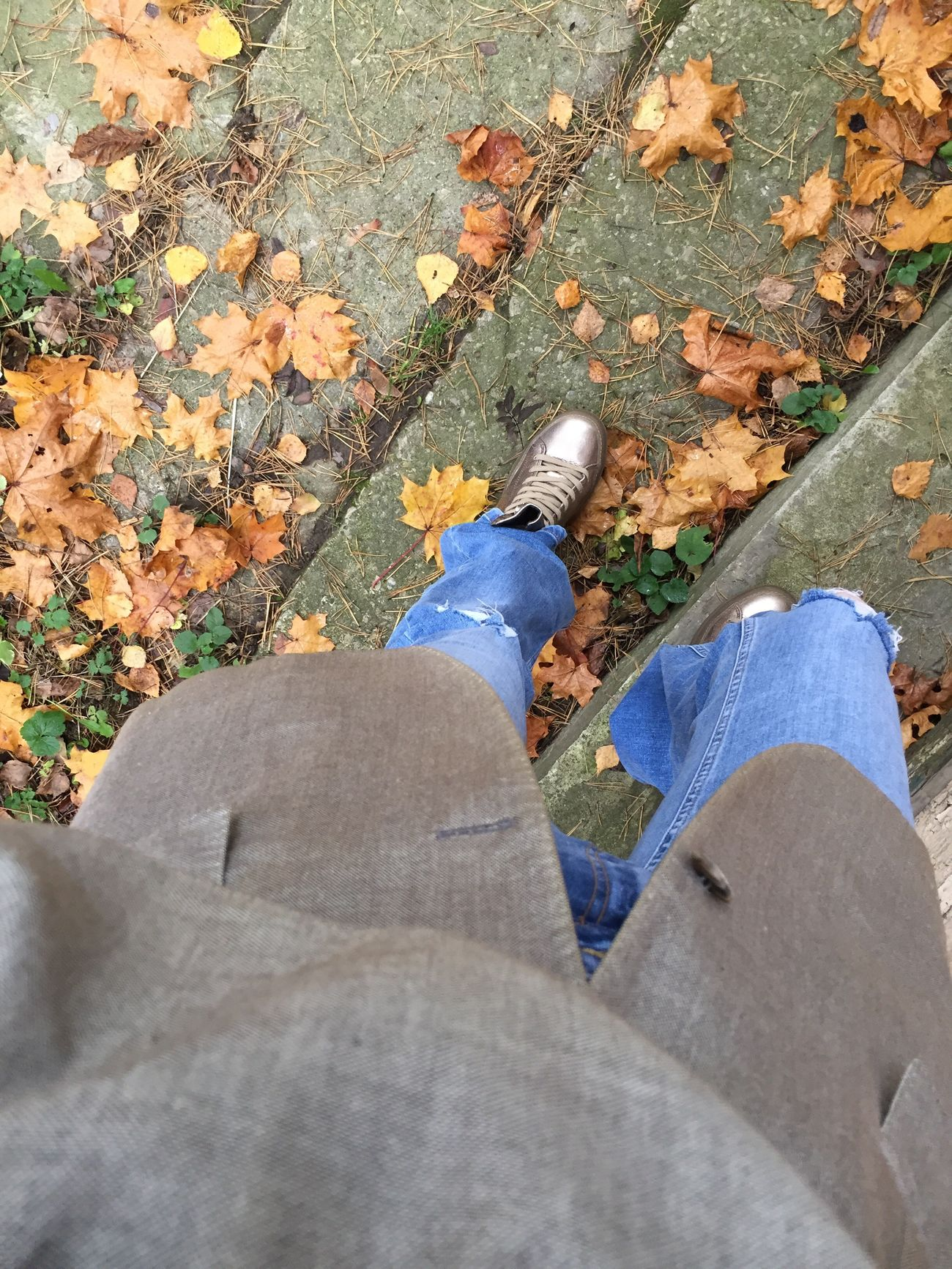 Fall Colors Legs Snikers Denim. Helloworld