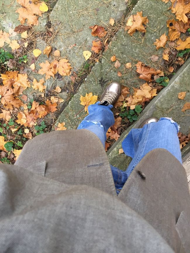 Fall Colors Legs Snikers Denim. Helloworld