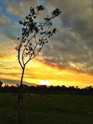 Hello world at Bintaro City by Mela Astari