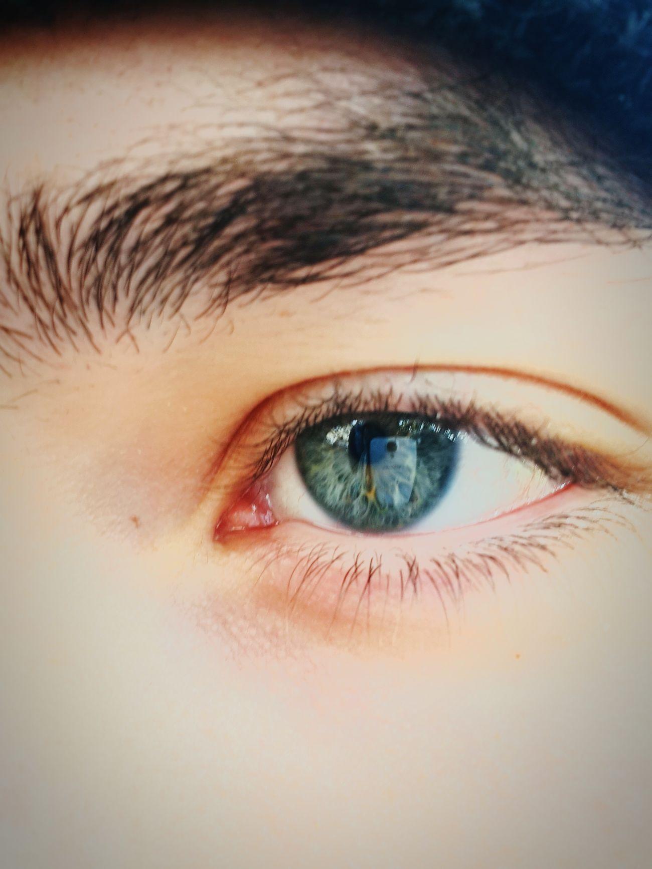 Eye4photography  Eye For Photography Green Eyes Reflejo En Ojos Tomando Fotos