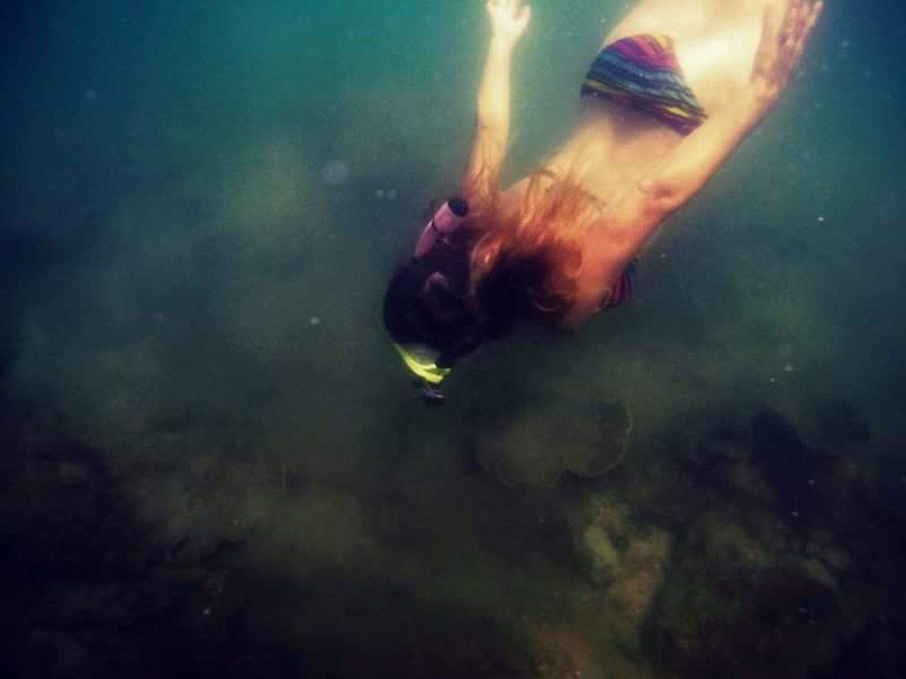 swimming, water, underwater, animal themes, sea life, animals in the wild, one animal, undersea, real people, one person, nature, day, sea, outdoors, close-up, beauty in nature, people