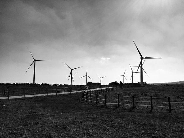 At Jeju island, Korea IPhoneography Monochrome From My Point Of View EyeEm Best Edits Black & White Landscape_bw Korea JEJU ISLAND  Wind Turbine Towers