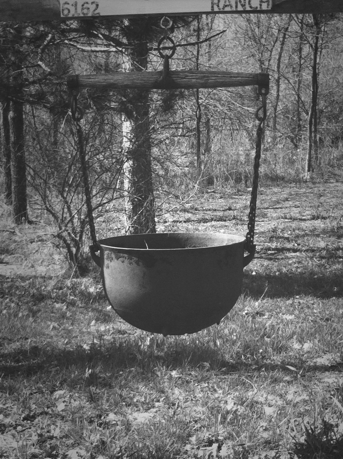 Witch Cauldron Deep Dark Woods