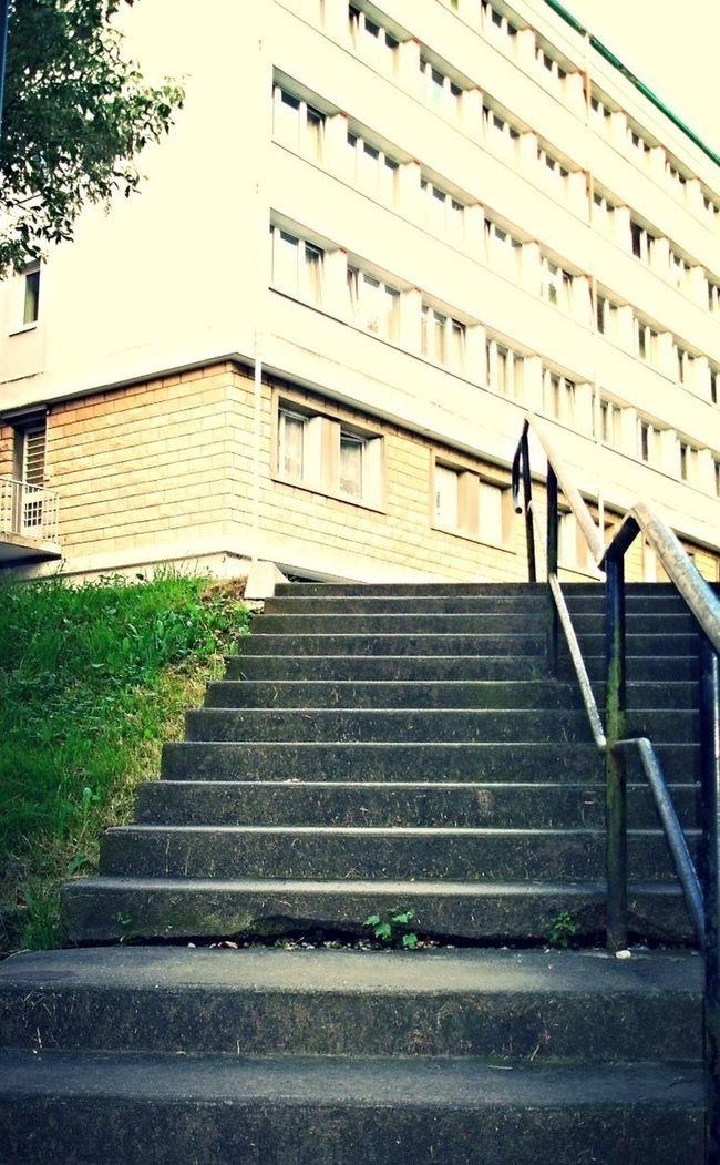 Steps Campus