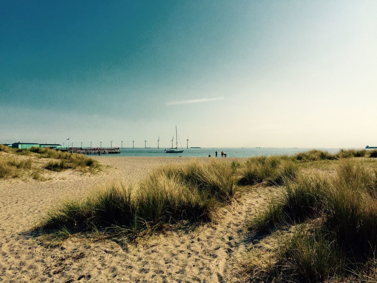 Copenhagen Grass Nature Beach Sea No People Tranquil Scene Tranquility Sand Outdoors Marram Grass Day Sky Horizon Over Water Water Beauty In Nature Scenics Clear Sky Growth
