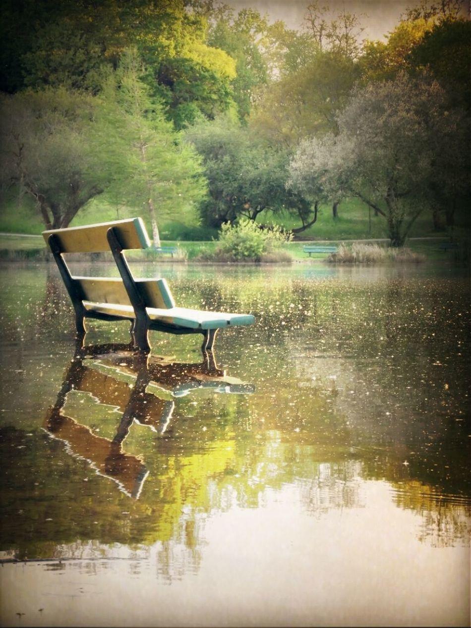 Sitting Enjoying The View Lake Lac