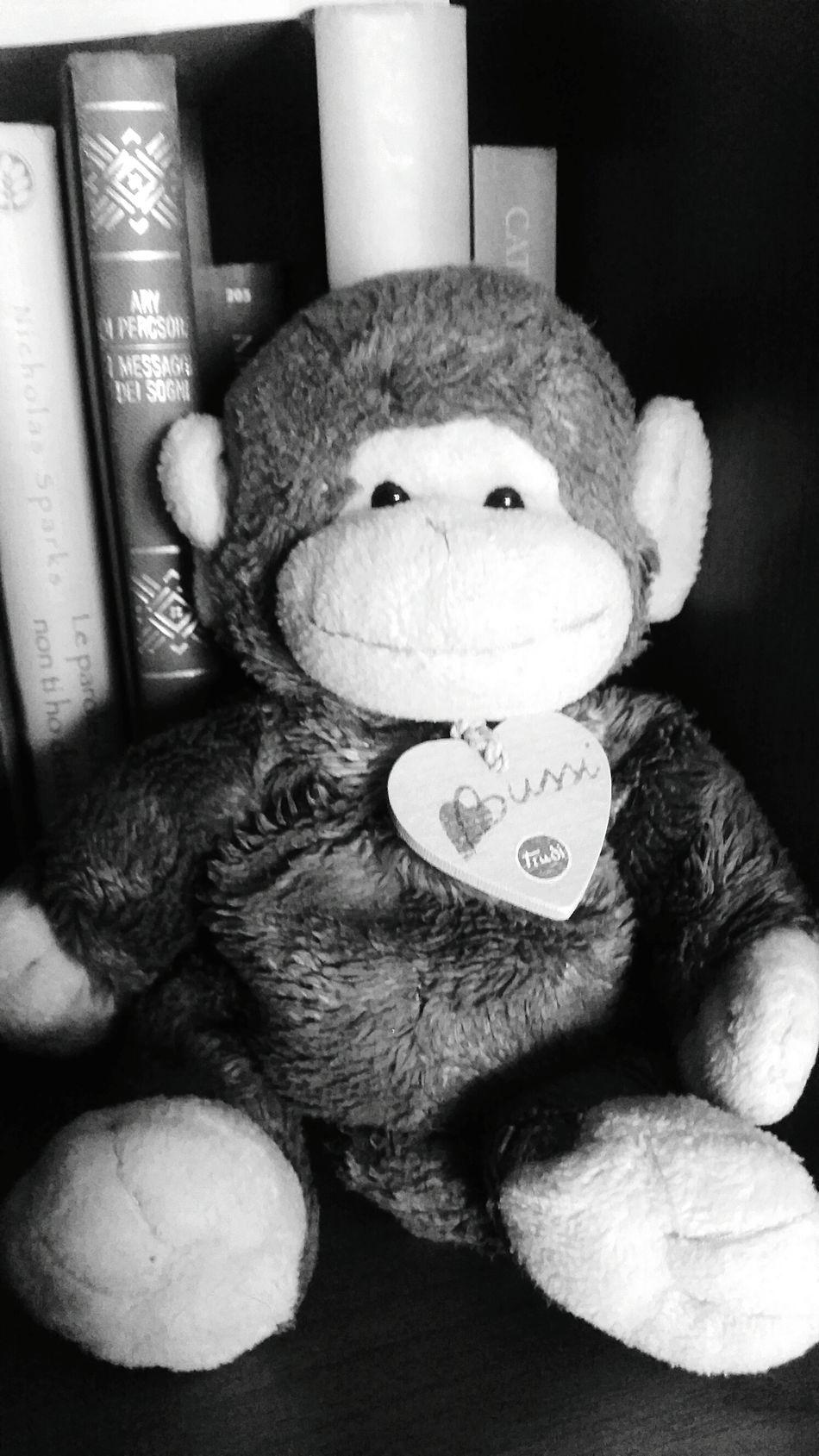 Scimmietta Monkey Libri  Books Leggere Tenderness Pupazzi