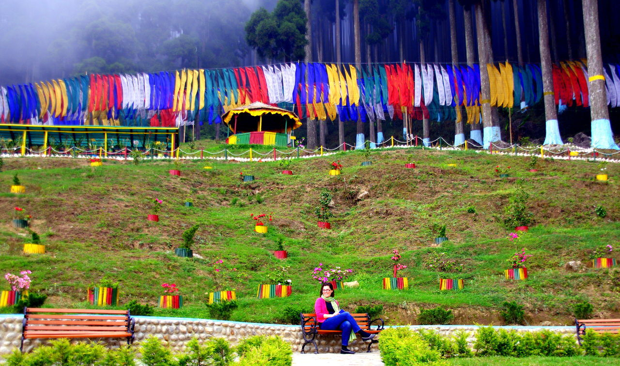 Colourful Darjeeling Expres Flags In The Wind  Foggy I Lamahatta Park Toy Train Train Ride Travel Photography