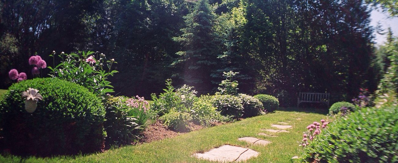 Garden Photography Sprocket Rocket Panorama Connecticut