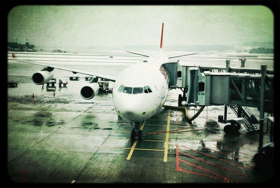 Common Object Planes Trains Automobiles