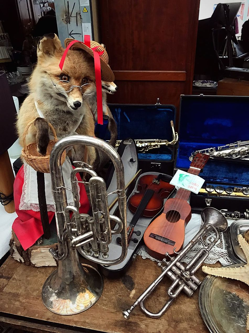 It's always a fun to spend some time at the flee market 😊 Puces Du Canal Flee Fleemarket Market Animal Themes Large Group Of Objects Trumpet Fox Violin Old Vintage Vintage Photo Vintage Style Vintage Cars Vintage Car Vintage Fashion Vintage Camera Vintage Moments Vintage❤ Vintage Photography Vintage Lenses Vintage Signs Vintage Stuff Vintage Bicycles Vintage Filter Vintage Lens Vintagestyle Vintage Technology Vintagecar Vintage Furniture Vintage Look Vintage Vehicles Vintage Building Vintage Toys Vintage House Vintage Trucks Vintage Architecture Vintagelens VintageCamera