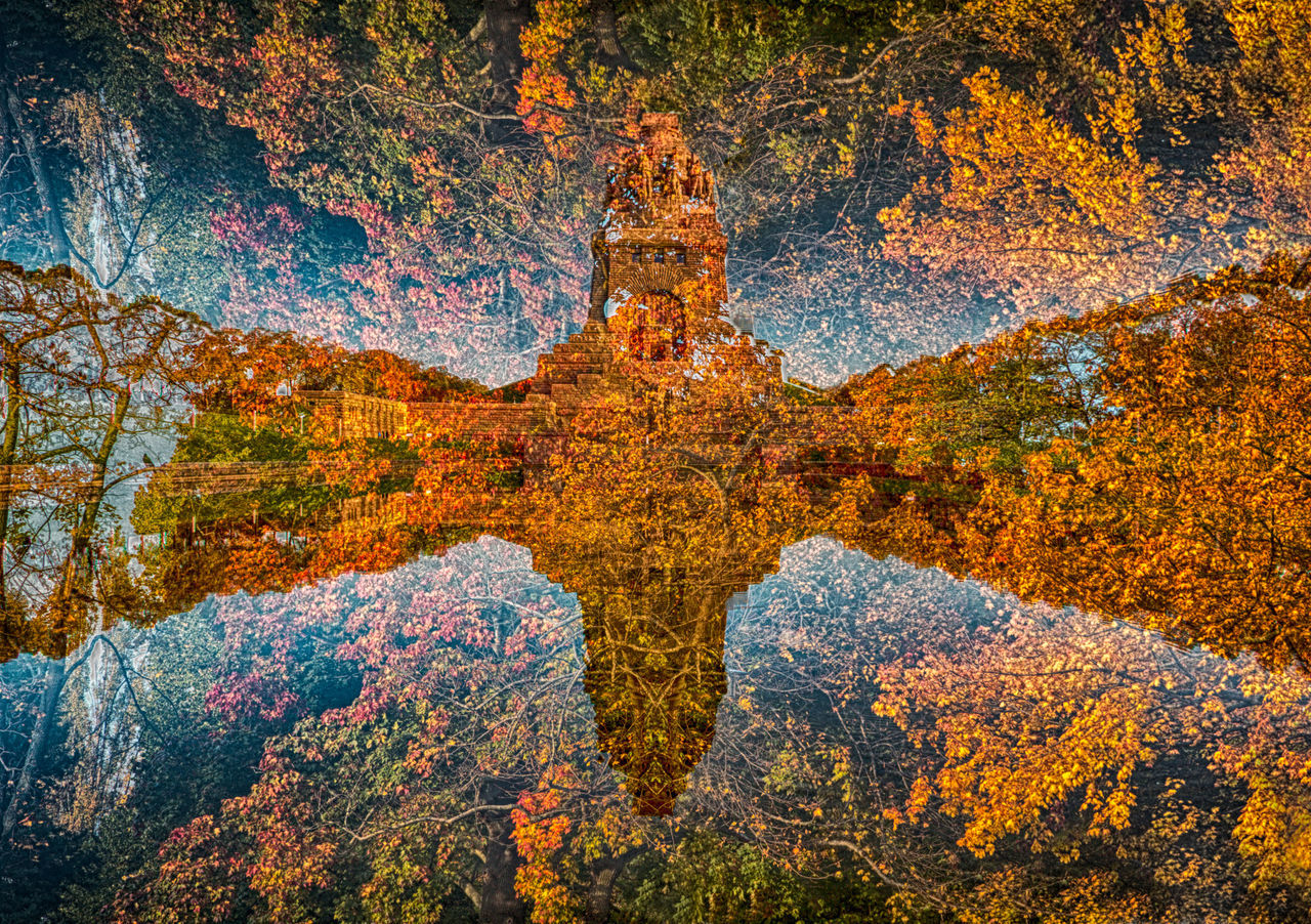 autumn, reflection, beauty in nature, nature, tree, scenics, outdoors, no people, forest, day