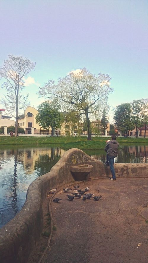 Day 80 of 365 . Park in my home town Siedlce . Lake People Outdoors Father Son Feeding The Birds Feeding The Fish Day Tree Sky Adults Only Full Length Standing On One Leg