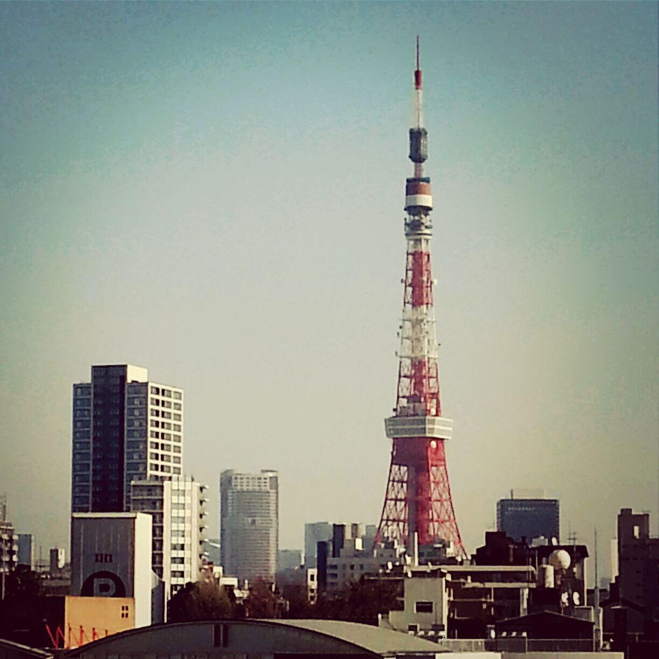 東京タワー 東京タワー 東京タワーと六本木の街 六本木ヒルズ