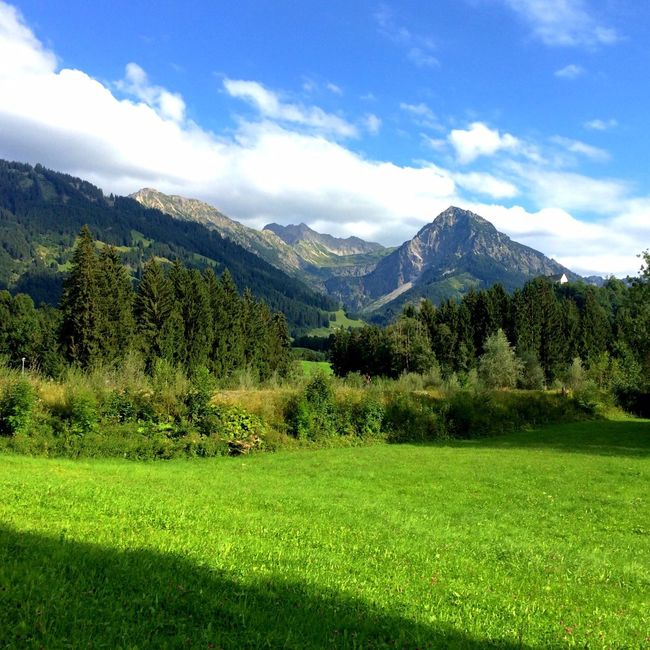 Bavaria Bavarian Alps Greenery Mountains Eyem Best Shots Nature_collection EyeEm Nature Lover Eyem Nature Lovers  Nature Taking Photos Beautiful Nature