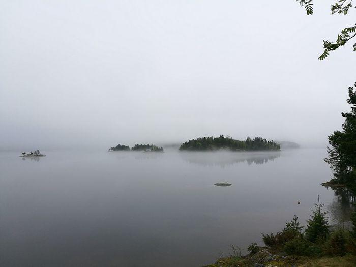 Fog Lake Landscape Water Misty Landscape Mistywater Misty Lake
