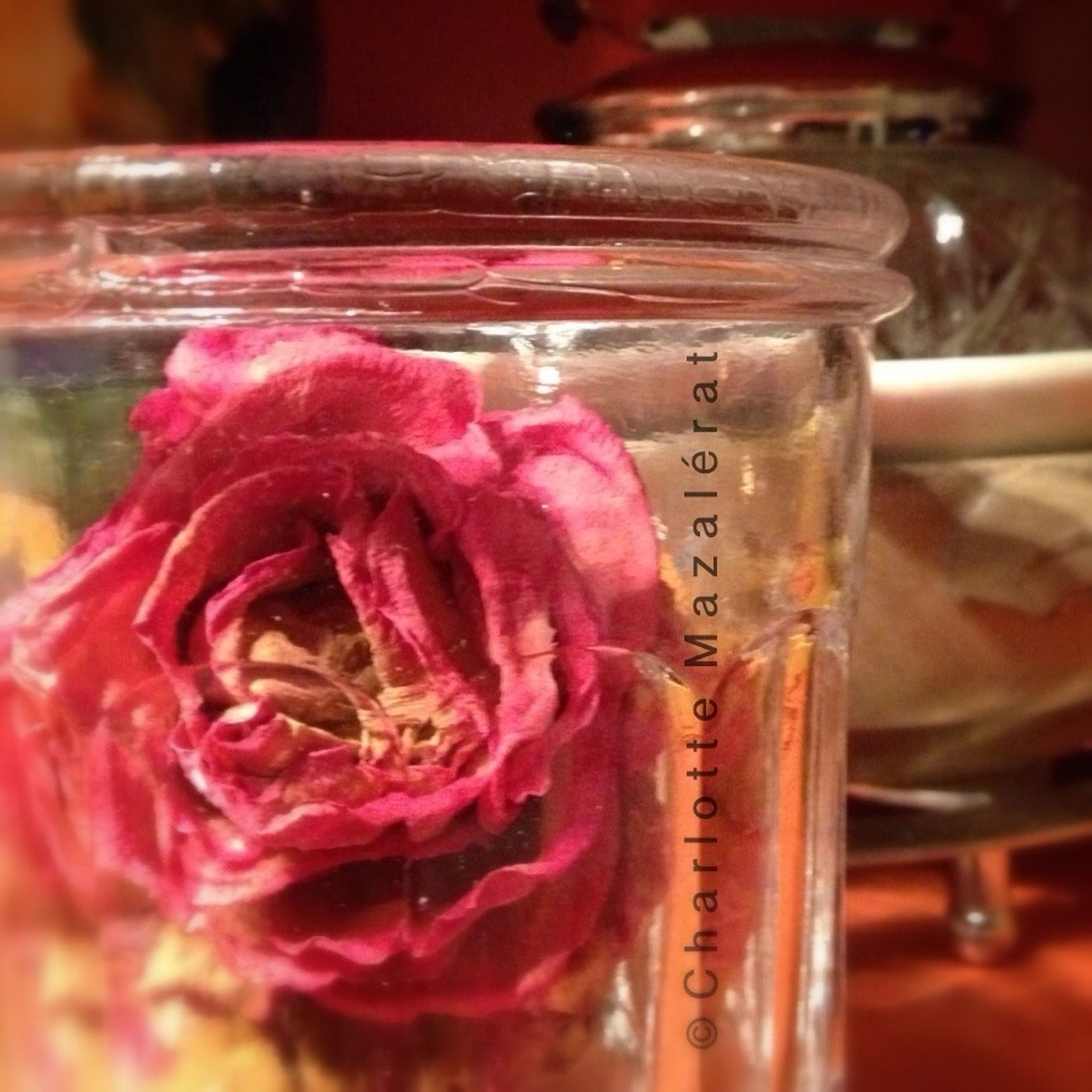 indoors, close-up, focus on foreground, text, pink color, freshness, selective focus, glass - material, table, western script, flower, still life, red, transparent, no people, communication, fragility, food and drink, reflection, day