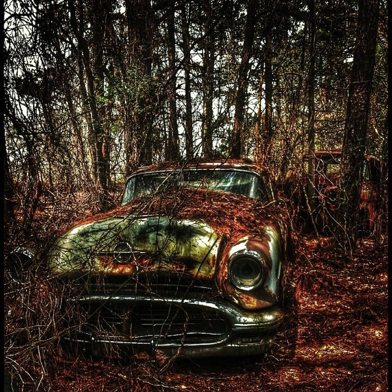 The family car! Oca_rural_ladies Rustlord Rsa_preciousjunk Rsa_preciousjunk rsa_abandoned royalsnappingartists rsa_ladies rsa_ladies rustlord_communitythrive